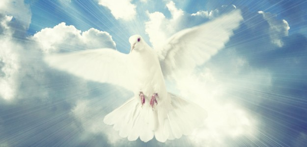 Holy Spirit; angel-love-blessings; angel-channel